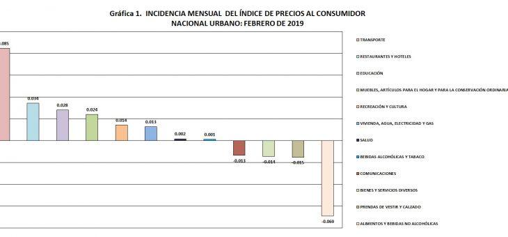 EL ÍNDICE DE PRECIOS AL CONSUMIDOR NACIONAL URBANO DE FEBRERO RESPECTO A ENERO DE 2019, REFLEJÓ VARIACIÓN DE 0.1%.